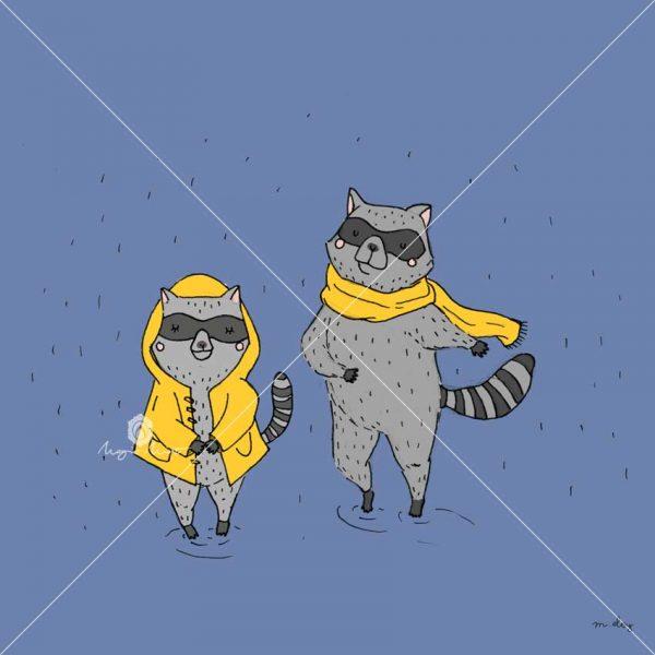 raccoon-rain